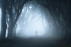 UK, Northern Ireland, Antrim, Motorcycle in fog - stock photo