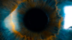 Eye iris and pupil macro . Many color correction options - stock footage