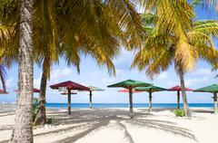 Caribbean sea, Antigua, wooden parasols and palms on beach Stock Photos