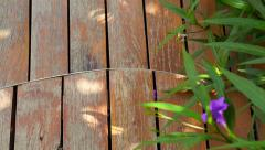 Video of Curved cut wooden deck in the garden Stock Footage
