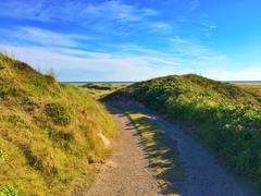Road between sand dunes, Fanoe, Denmark Stock Photos
