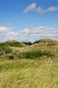 Summerhouse hidden in the dunes, Fanoe, Denmark Stock Photos