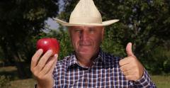Thumbs Up Good Harvest Orchard Farmer Examine Red Apple Fruit Camera Present - stock footage