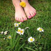 Close up of girls feet in the summer grass with nail polish - stock photo