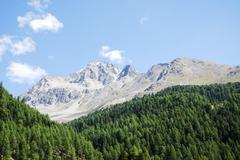 Alps in the Vinschgau - stock photo