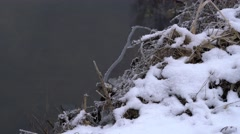 New Ice and River Winter Background Stock Footage