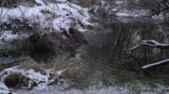 River Flowing thru Winter Forest  - stock footage