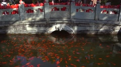Stone bridge for pray blessings and a pool full of fish,in a Buddhist temple Stock Footage