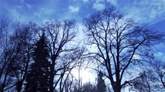 Silhouettes of trees without leaves with background movement of clouds, sun Stock Footage