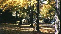 Big Trees Sweeping Autumn Leaves Fall Season Vintage Film Home Movie 8669 - stock footage