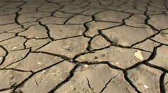 Mudcracks in the dry soil...slow dolly shot Stock Footage