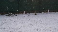Snowfall at Snowy Lawn Stock Footage