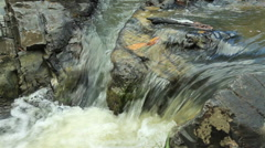 Mountain stream between stones. Little rapids. - stock footage