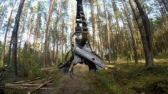 Forest Harvester in action - cutting down tree. Harvester moves through the fore Stock Footage