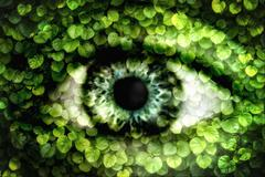 Double exposure of a human eye and wall of ivy Stock Photos