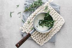 Rosemary infusing in saucepan of milk - stock photo