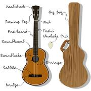 Ukulele Parts with Gig Bag Piirros