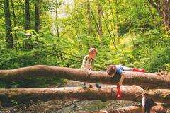 Two young boys climbing over trees by a creek - stock photo
