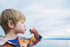 Side view of a boy kissing a crab on beach Stock Photos