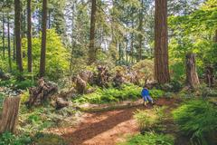 Little boy sitting on a log in the woods Stock Photos