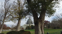 United States Capitol building through the trees Stock Footage
