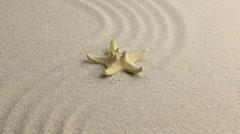 Yellow starfish lying on the undulating sand beach - stock footage