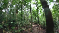 Wide angle running action shot on Amazon jungle trail Stock Footage