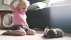 A cat toy breaks while a little girl is playing with a kitten Stock Footage