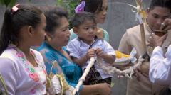 Hindu ceremony for a young boy in Bali with family - stock footage