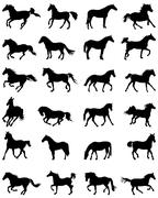 Orses silhouettes Stock Illustration