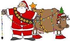 Santa decorating his Christmas cow Stock Illustration