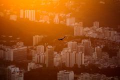 Bird soaring above city at sunset, Rio de Janeiro, Brazil - stock photo