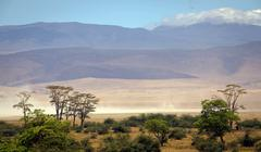Ngorongoro Crater Wildlife Reserve, Tanzania Stock Photos
