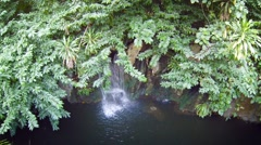 Natural, Tropical Waterfall, Overshadowed by Tree Branches, with Sound Stock Footage