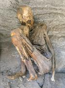 antique mummies in Alcaya, Bolivia - stock photo