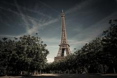 Eiffel tower between trees, Paris, France - stock photo