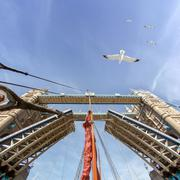 Low angle view of boat mast sailing under raised tower bridge, London, England Stock Photos