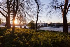 Albert bridge seen from battersea park, London, England, UK - stock photo