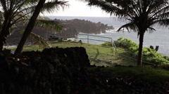 Overlooking the Maui coastline through palm trees Stock Footage