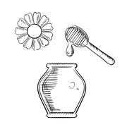 Honey jar with dipper and flower Stock Illustration