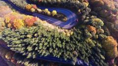 AERIAL: Abstract shot of curvy road in a colorful forest during autumn season Stock Footage