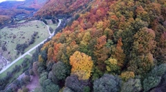 AERIAL: Flying over colorful trees in autumn time - stock footage