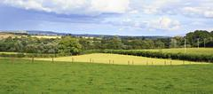 Beautiful summer farmland in countryside of Ireland Stock Photos