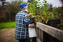 Senior man gardening, carrying bucket of dead leaves Stock Photos