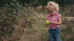 A cute little girl throws an apple into a goat pen Stock Footage