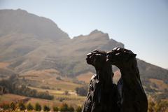 Cape Wine Lands - stock photo