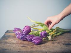 Hand picking up dead flowers from table - stock photo