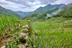 road in rice paddy terrace fields  Philippines - stock photo