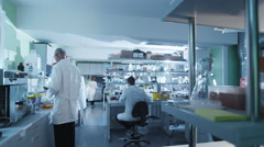 Timelapse footage of a team of scientists that are working in a laboratory - stock footage