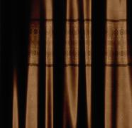 Brown curtain with pattern - stock illustration